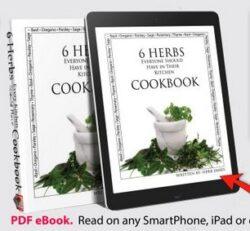Herbs : The Natural Alternative
