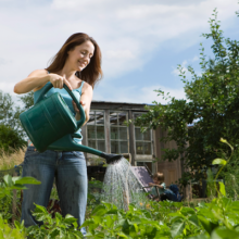 Things You Can Grow for Optimal Nutritional Value